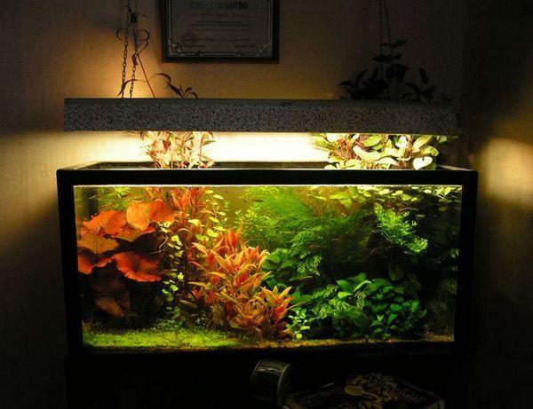 Осветление на аквариума