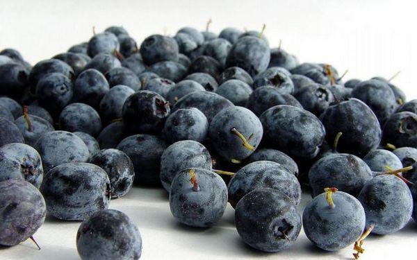 Плодове от боровинки