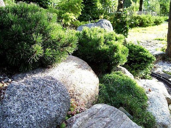 Много големи камъни