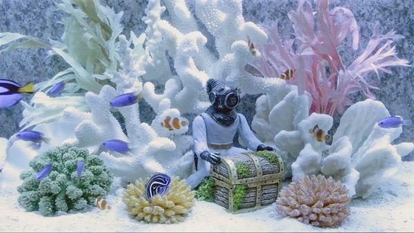 Пример за аквариум в авангарден стил