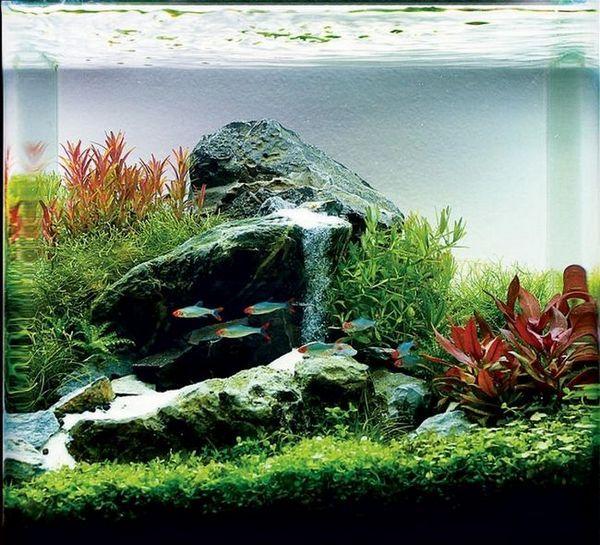 Водопад в аквариума