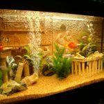 Снимка 60: Симулиране на руините в аквариума