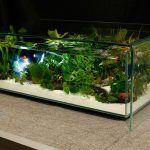 Снимка 61: Таблица-аквариум