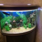Снимка 10: Ъглов аквариум