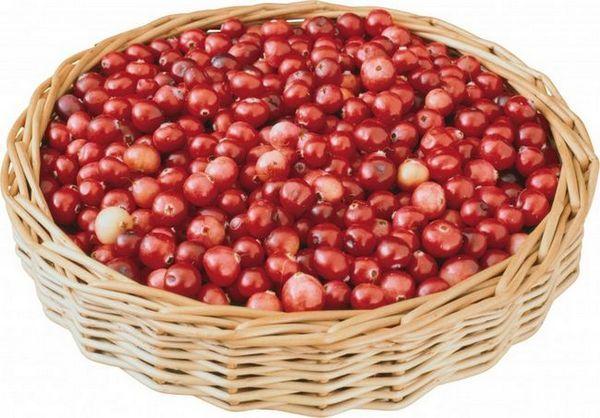 Каубъри плодове полезни свойства