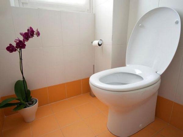 Тоалетна седалка от Duroplast