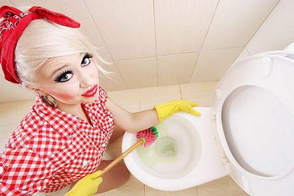 Как да почистите тоалетната в дома