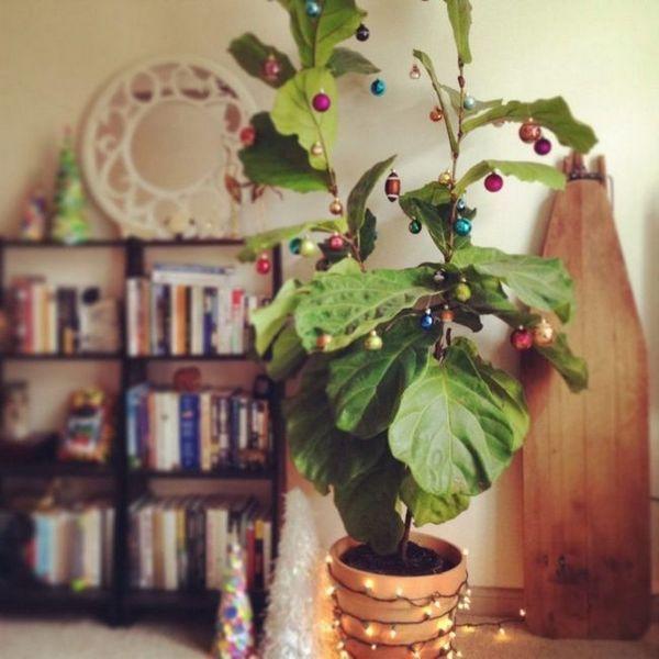 Декориране на домашни растения за Нова година