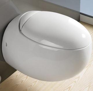 Външна тоалетна чиния