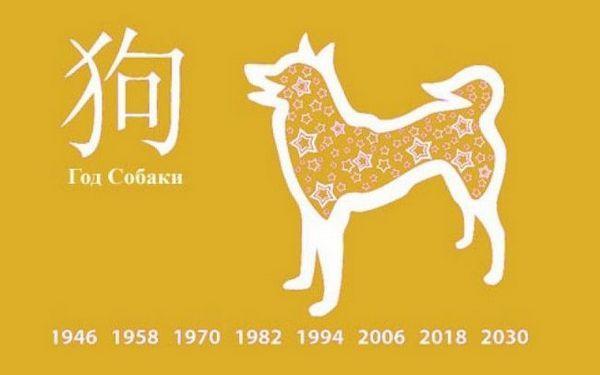 Година на жълтото земно куче
