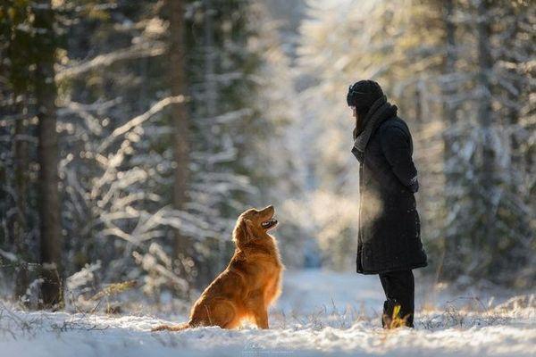 Куче като подарък за сина си