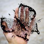 Фотосесия: пепелник черна пеперуда