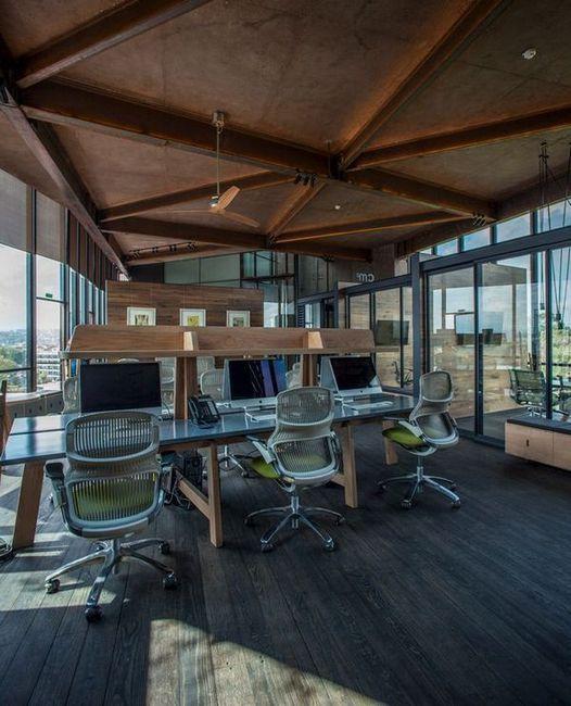 Офис с необичайна форма над короните на дърветата