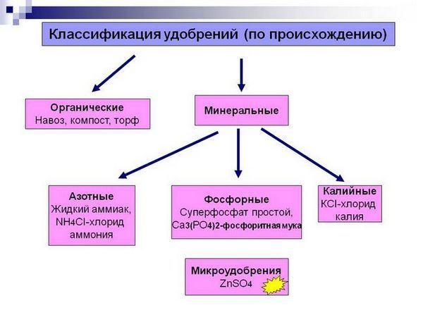 Снимка 18: Класификация на торовете
