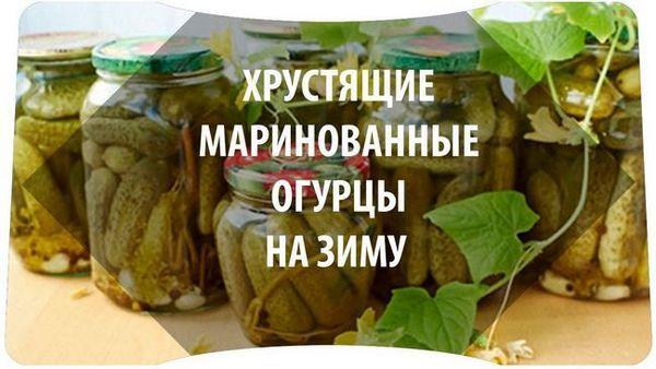 Рецепти за реколта за зимата на хрупкава кисели краставица