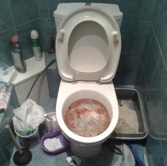 Запушена тоалетна вълна