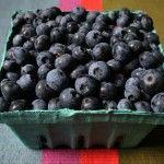 Снимка 20: Събрани боровинки