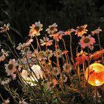 Снимка 29: слънчево осветление на цветни лехи