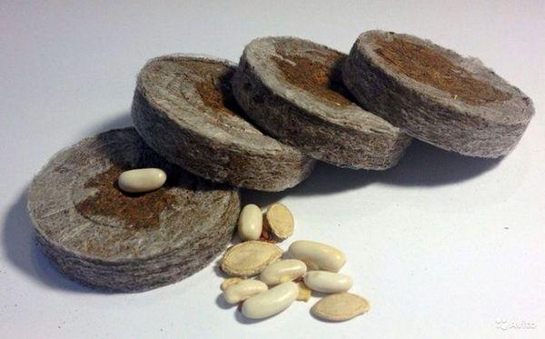 торфени таблетки за разсад (2)