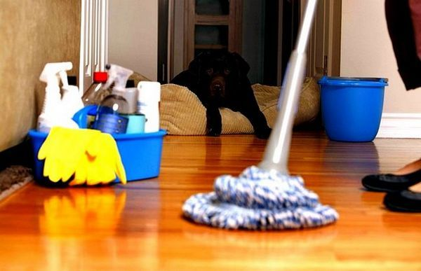 Най-ефективният начин за почистване на апартаментите