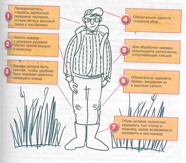 Снимка 16: Защита срещу кърлежи