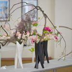 Снимка 53: Пролетна композиция на сойджу