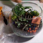Снимка 56: Композиция във вазата на флоратарията