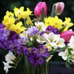 Снимка 36: Пролетен букет до 8 март