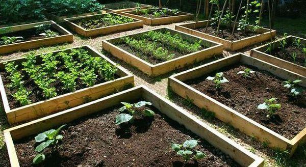 Градината е оборудвана с легла за мързеливи хора