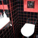 Снимка 21: Червена мистрия върху черна плочка